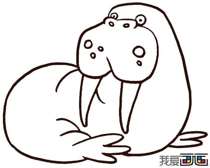 """所谓动物简笔画,就是用简单的线条画出动物主要的外形特征,要画得""""简"""",画得像。必须删掉细节,突出主要特征,把复杂的形象简单化。动物简笔容易掌握,不仅能激发孩子的学画兴趣,还可以培养孩子的速记能力、概括能力、想像能力,有利于孩子的智力发展。 动物简笔画,海象"""