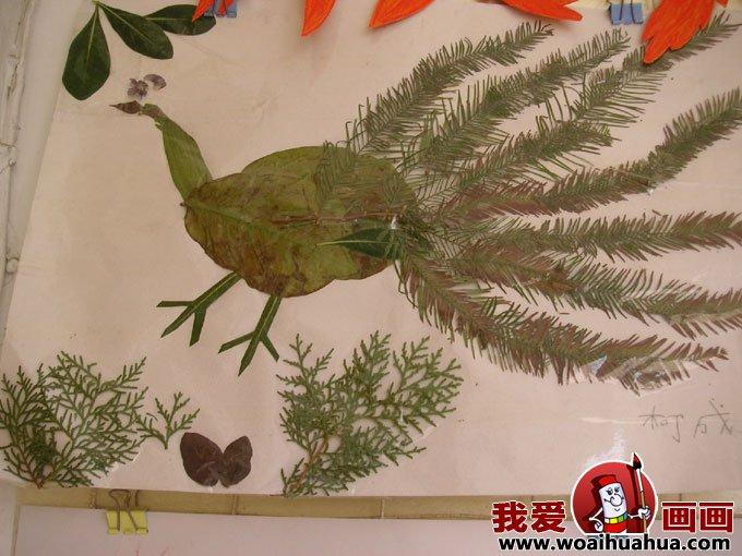 有趣的儿童树叶粘贴画作品图片欣赏(9)图片