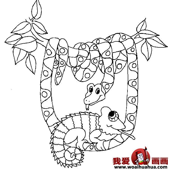 简笔画蛇-11张蛇的简笔画图片(8)