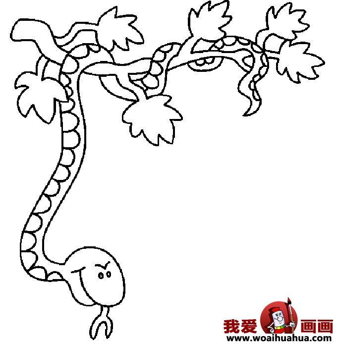 简笔画蛇-11张蛇的简笔画图片(11)