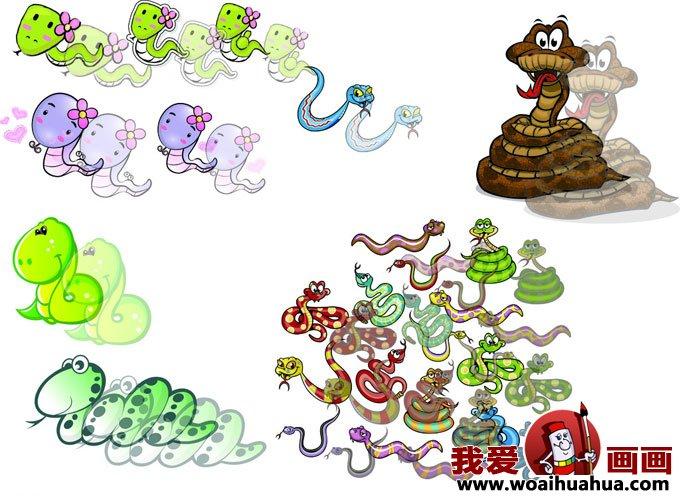 卡通画蛇-各种形态的小蛇卡通画图片大全(4)