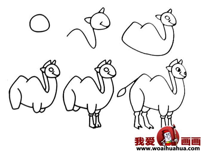儿童简笔画教程大全 -骆驼的画法图片