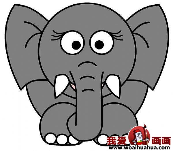 儿童简笔画大象的步骤:教你怎么画大象(7)