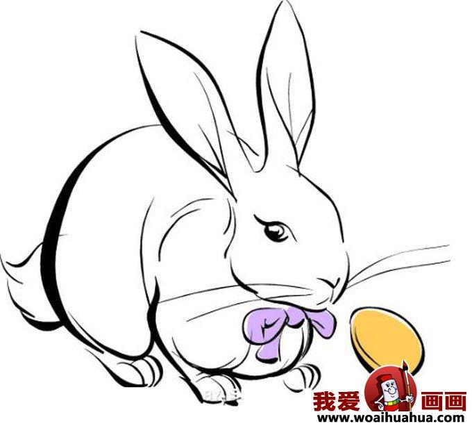 小兔子简笔画,兔子简笔画图片大全(6)_儿童画教程_学