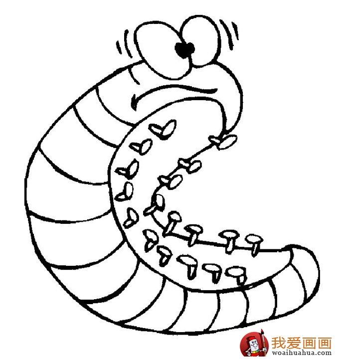13副毛毛虫儿童简笔画:毛毛虫简笔画可爱图片(11)