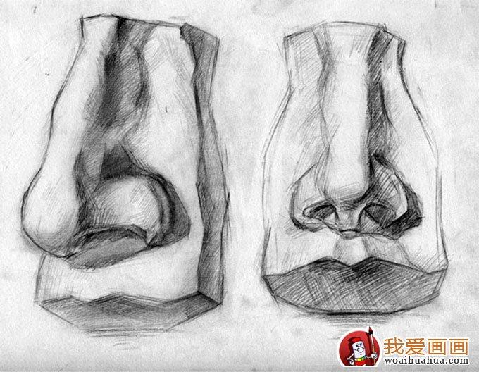石膏像鼻子的素描画图片(8)