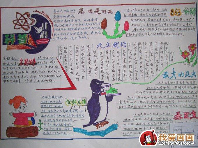 少年儿童科学知识科普手抄报图片(6)