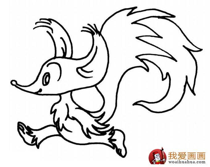 简笔画狐狸大全:可爱的小狐狸简笔画图片13张(7)
