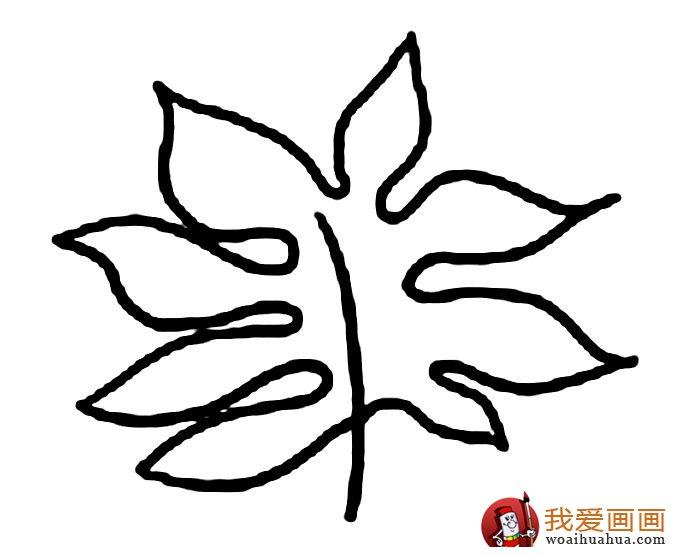 关于树叶的简笔画,各种树叶简笔画图片(6)
