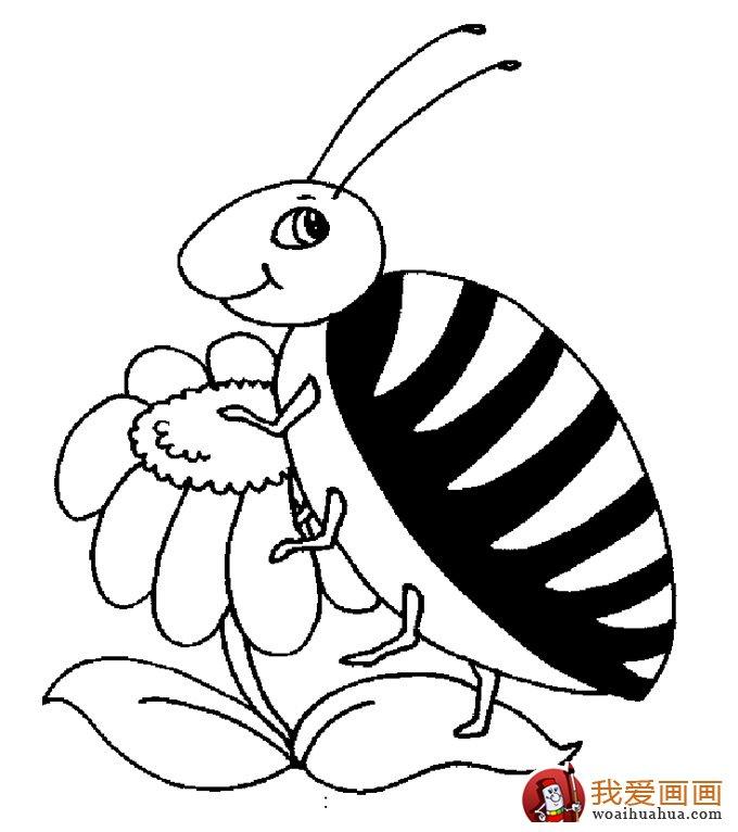 小蜜蜂简笔画,蜜蜂简笔画图片大全(4)
