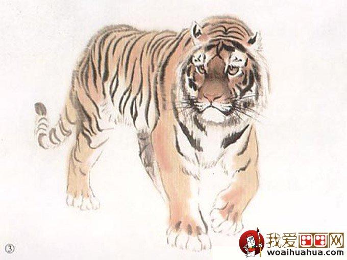 彩墨国画老虎绘画教程:老虎彩墨写意画法图文步骤(2)