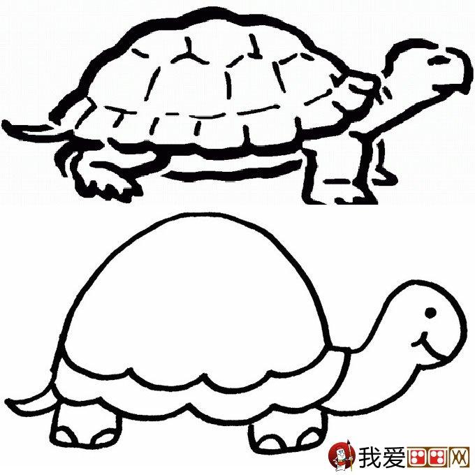 乌龟简笔画图片大全:12个可爱的小乌龟