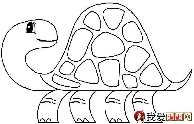 乌龟简笔画图片大全:12个可爱的小乌龟(4)