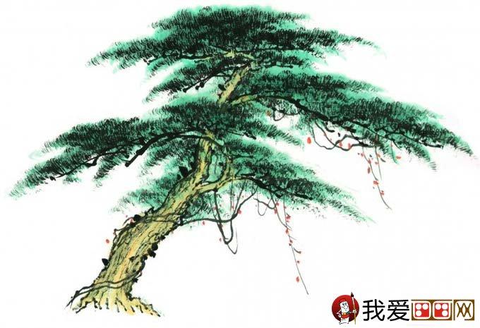 国画松树的画法:松柏松树水墨画图片大全之设色篇(66)  国画松树的画法:松柏松树水墨画图片大全之设色篇(67)