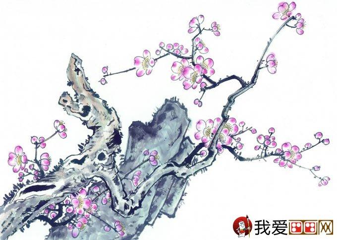 梅花奇石图水墨画 梅花与假山奇石的国画组合图片11p