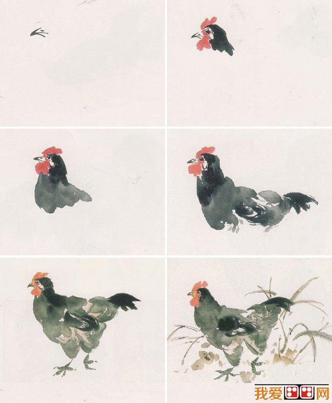 两个国画母鸡教程:水墨画母鸡的画法图文步骤(2)