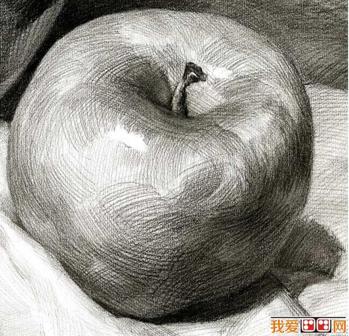 静物素描     画单个苹果