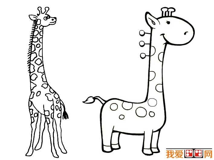 长颈鹿简笔画图片大全(2)_儿童画教程_学画画_我爱网