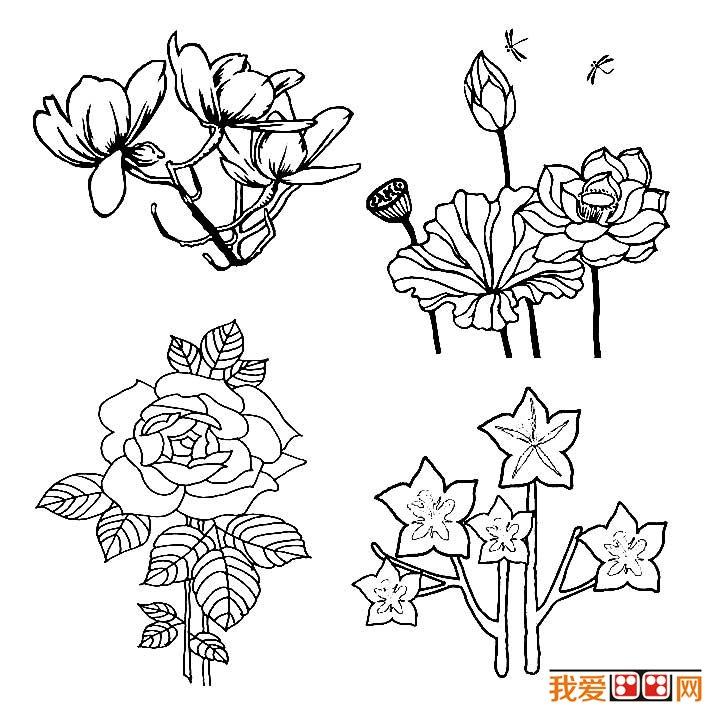 最好的素材,这批花卉简笔画可以帮助您练习简笔画的画法,简笔画填色学习等。  花朵简笔画图片大全,各种各样的花儿简笔画  花朵简笔画图片大全,各种各样的花儿简笔画  花朵简笔画图片大全,各种各样的花儿简笔画  花朵简笔画图片大全,各种各样的花儿简笔画