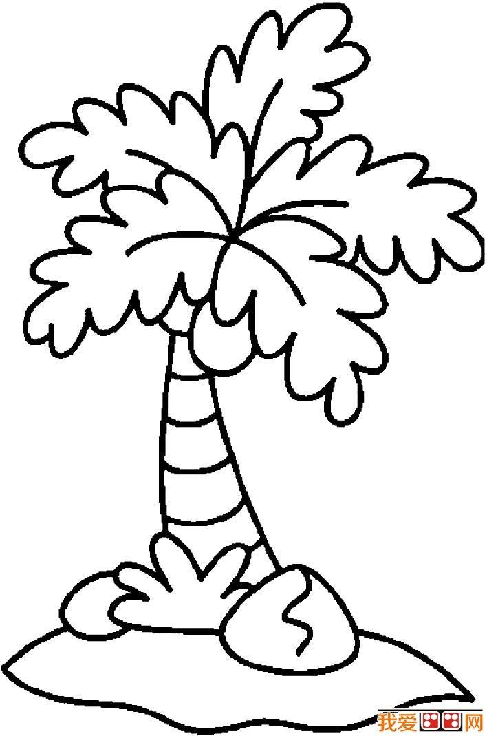 椰树简笔画,椰子树简笔画图片大全(4)