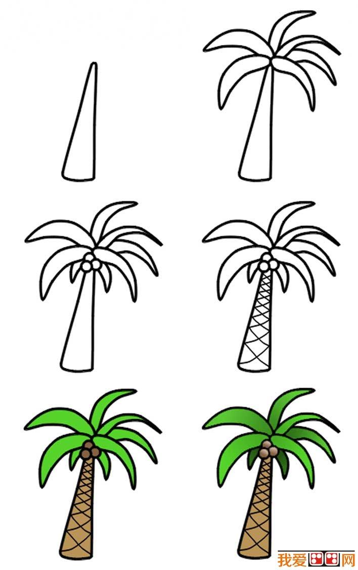 椰子树简笔画画法,椰树的简笔画法和填色教程