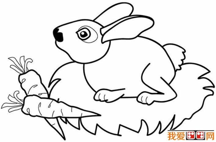 简笔画兔子图片大全,儿童简笔画兔子卡通图片
