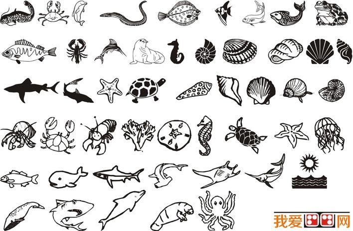 海洋動物和海洋生物簡筆畫圖片大全 兒童畫教程 學畫畫 我愛畫畫網 一圖片