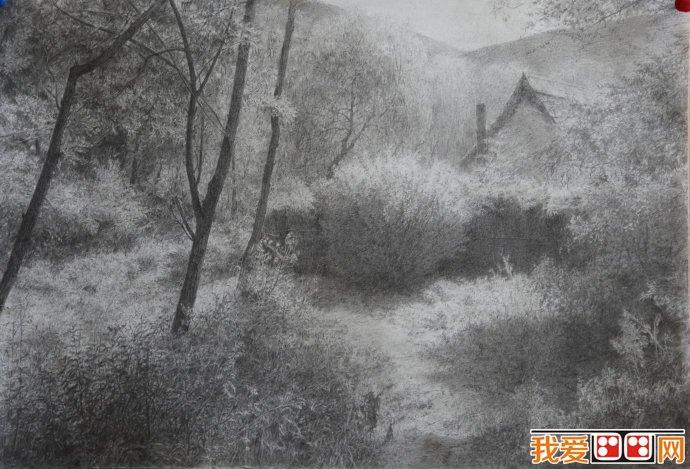 山村树木风景素描作品欣赏