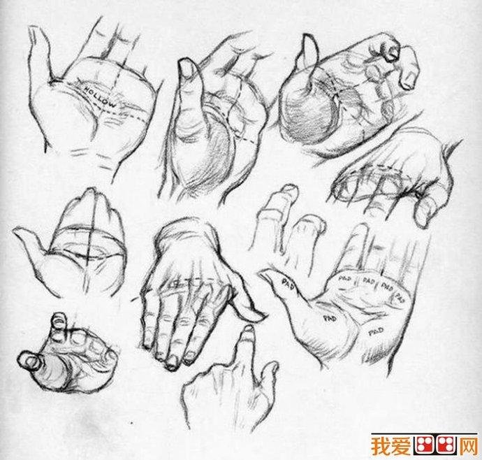 画一只手的步骤