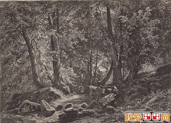 著名画家希施金素描风景画欣赏(4)