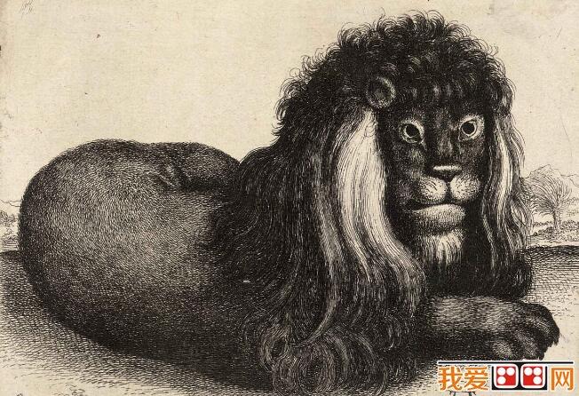 德国著名画家丢勒素描动物作品欣赏(4)