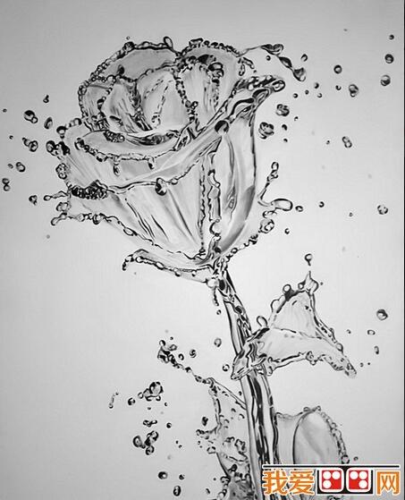超写实静物素描优秀作品欣赏(5)