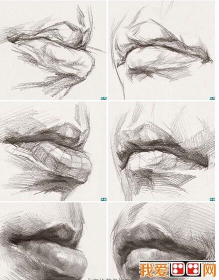 学画画 素描教程 素描头像            嘴部表现步骤的要点分析     1