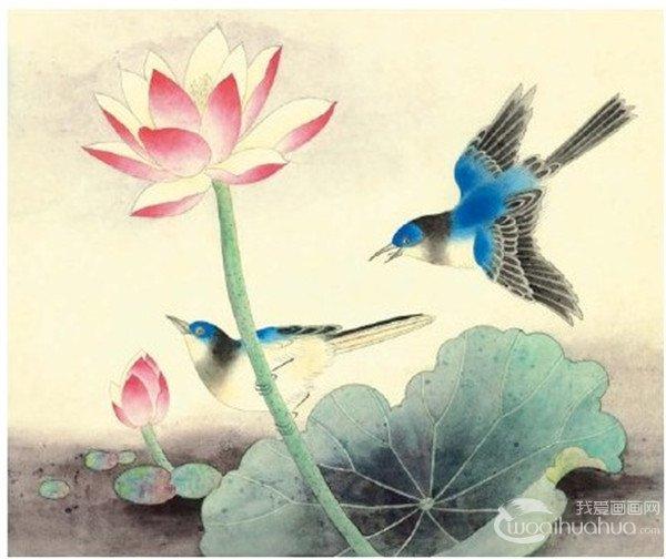 第三步:用酞青蓝分染鸟的头部、背部,用花青、三绿、藤黄冲染,用墨分染出荷叶。  脊苓鸟绘画步骤四 第四步:细部分染鸟的头、背、翅、尾,曙红提染荷花,用薄薄的三绿由外向内罩染荷叶,用墨青和曙红添加背景。  脊苓鸟绘画步骤五 第五步:用白色分染鸟的颌下白羽、腹羽和荷花内侧,用各种颜色在相应的部位丝毛,淡曙红勾勒荷花并用白色加藤黄点花蕊。