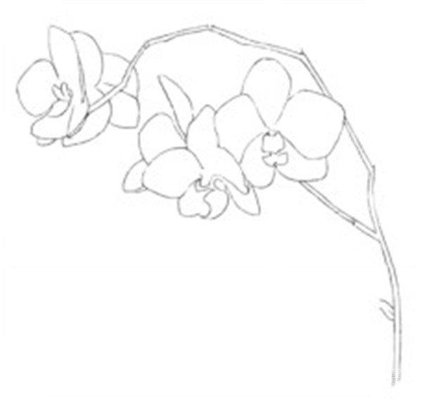 花卉水粉画教程-简单樱花水粉画教程|简单而又漂亮的水粉画|星空草地图片