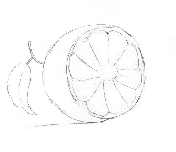 素描橙子的绘画教程