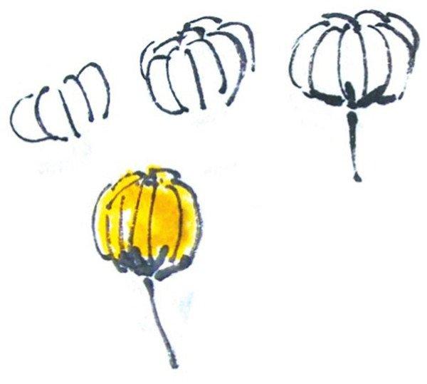 国画雏菊花朵的绘画步骤教程三