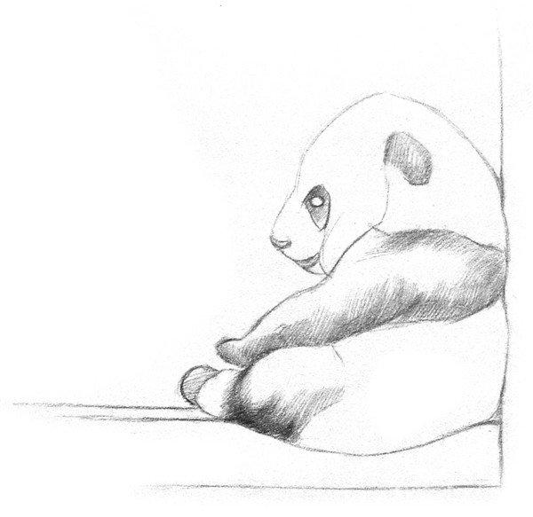 素描大熊猫的绘画步骤教程_素描教程_学画画_我爱画画