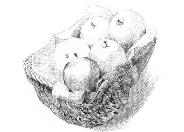 一,素描苹果篮的绘画步骤    1,首先观察水果的大体外形,然后轻轻