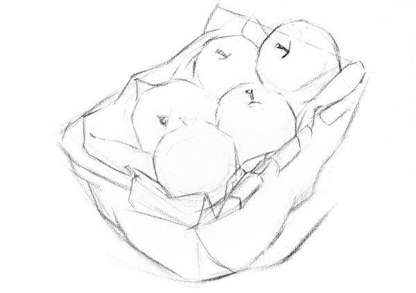 素描苹果篮的绘画步骤教程