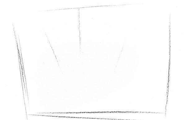 画出瓶子草的轮廓线,线条清晰明了.分享 素描瓶子草的 绘画步骤教程.