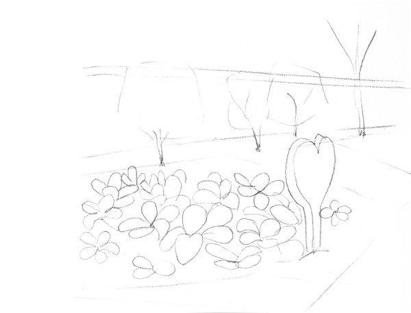 1、首先观察植物园整体的外形和分布面积,然后再画出种植园的大轮廓线。  素描菜地种植的绘画步骤一 2、画出种植园的蔬菜轮廓线,线条清晰明了,把近大远小的透视关系运用在画面中。  素描菜地种植的绘画步骤二 3、整体给画面铺上一层浅浅的色调,画出种植园的大体明暗关系。  素描菜地种植的绘画步骤三