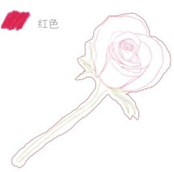 二年级画画玫瑰花步骤