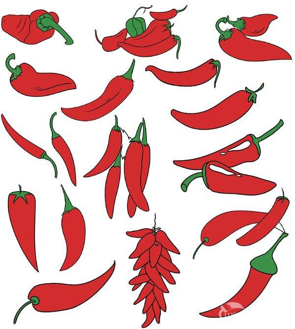 蔬菜类简笔画(5)