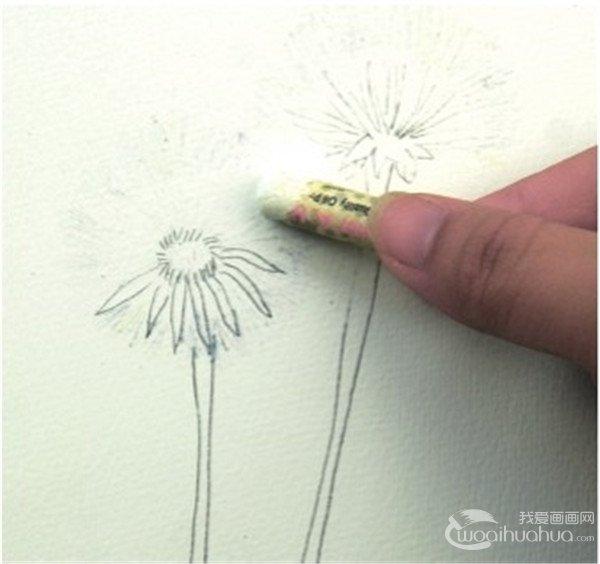 学画画 水彩画教程 水彩画技法     三,蜡笔与水彩:蒲公英的绘画步骤