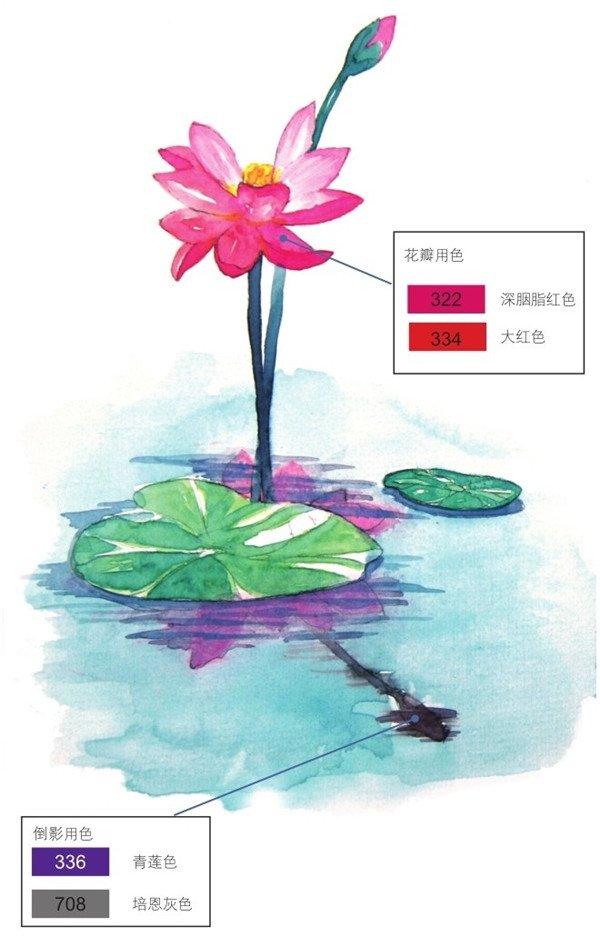 荷花倒影水彩绘画技法