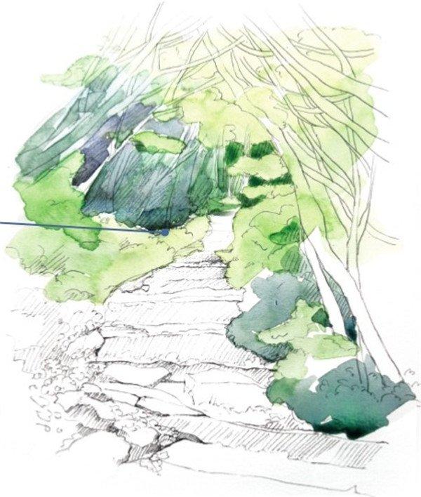 增加画面的层次感,画的是没有被阳光照耀的树叶及草丛背光的颜色.图片